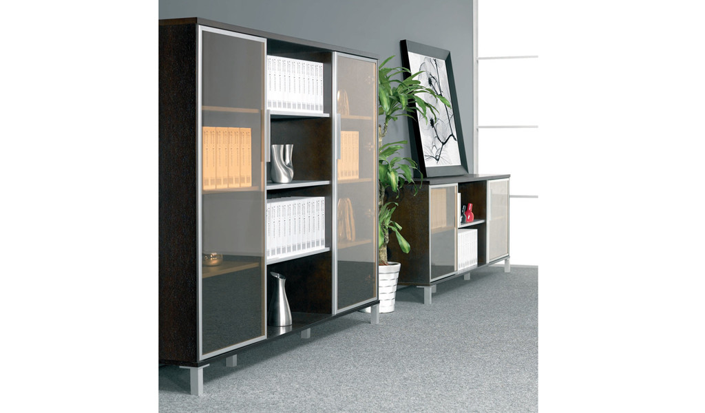 modern office with glass door cabinets