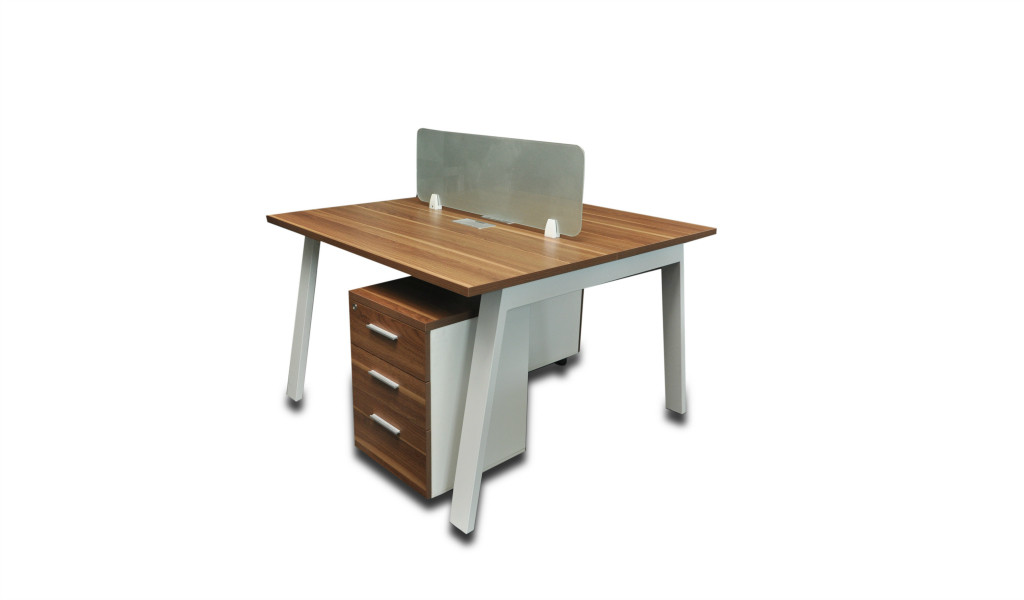 two seater linear workstation with frosted glass partition