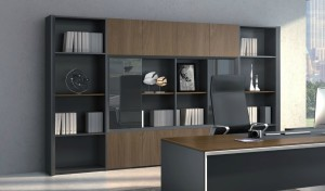 office cabin with large bookshelf with glass doors