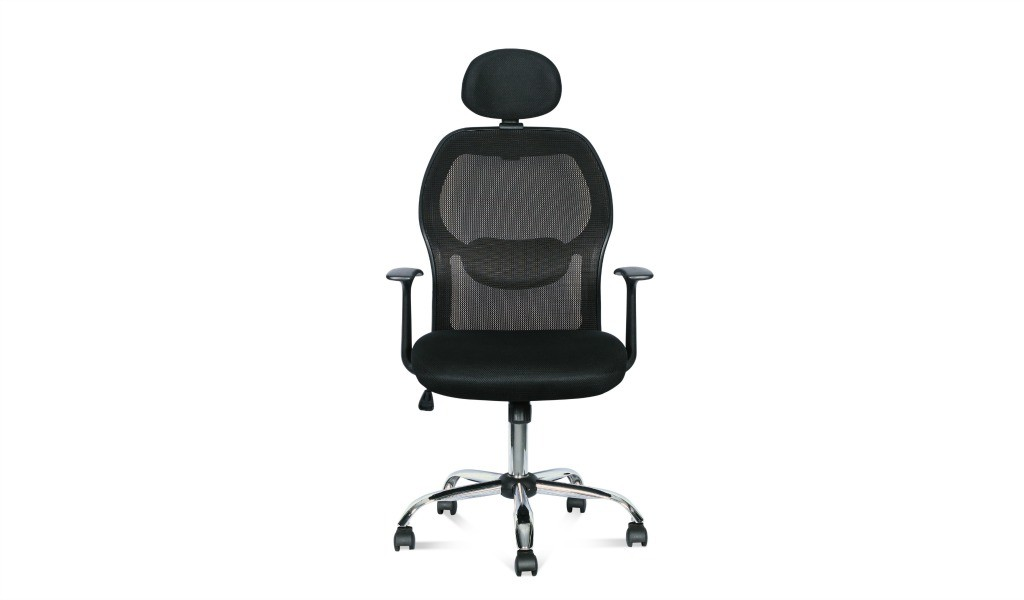 executive chair with adjustable lumbar support and adjustable headrest