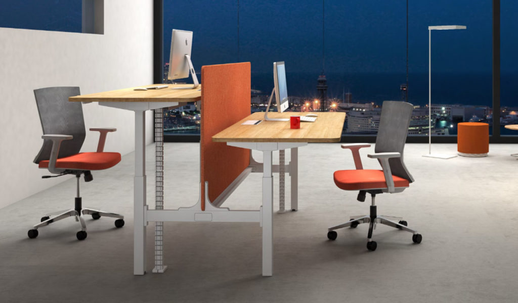 office with two seater height adjustable workstation unit with privacy screen